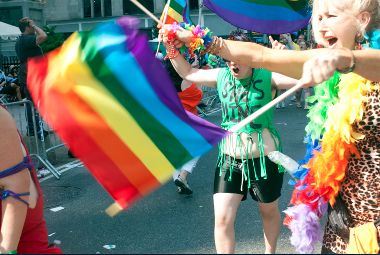 CELEBRATE gay pride march 2014