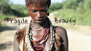 Fragile Beauty Visual Diary